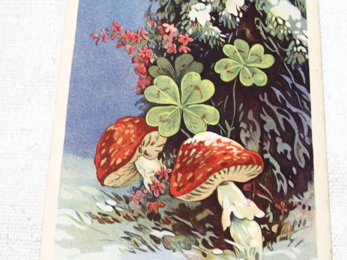 フランスアンティーク ポストカード 絵葉書 キノコと四葉のクローバー ドイツ オランダ ヨーロッパ_画像1