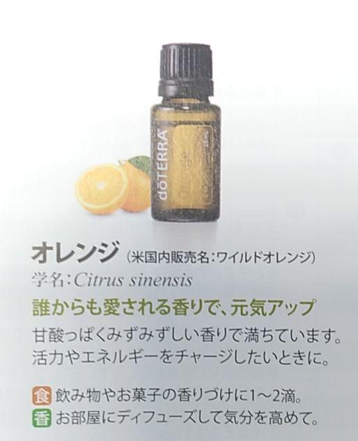 【新品】doTERRA 15ml オレンジ ドテラ エッセンシャルオイル アロマ