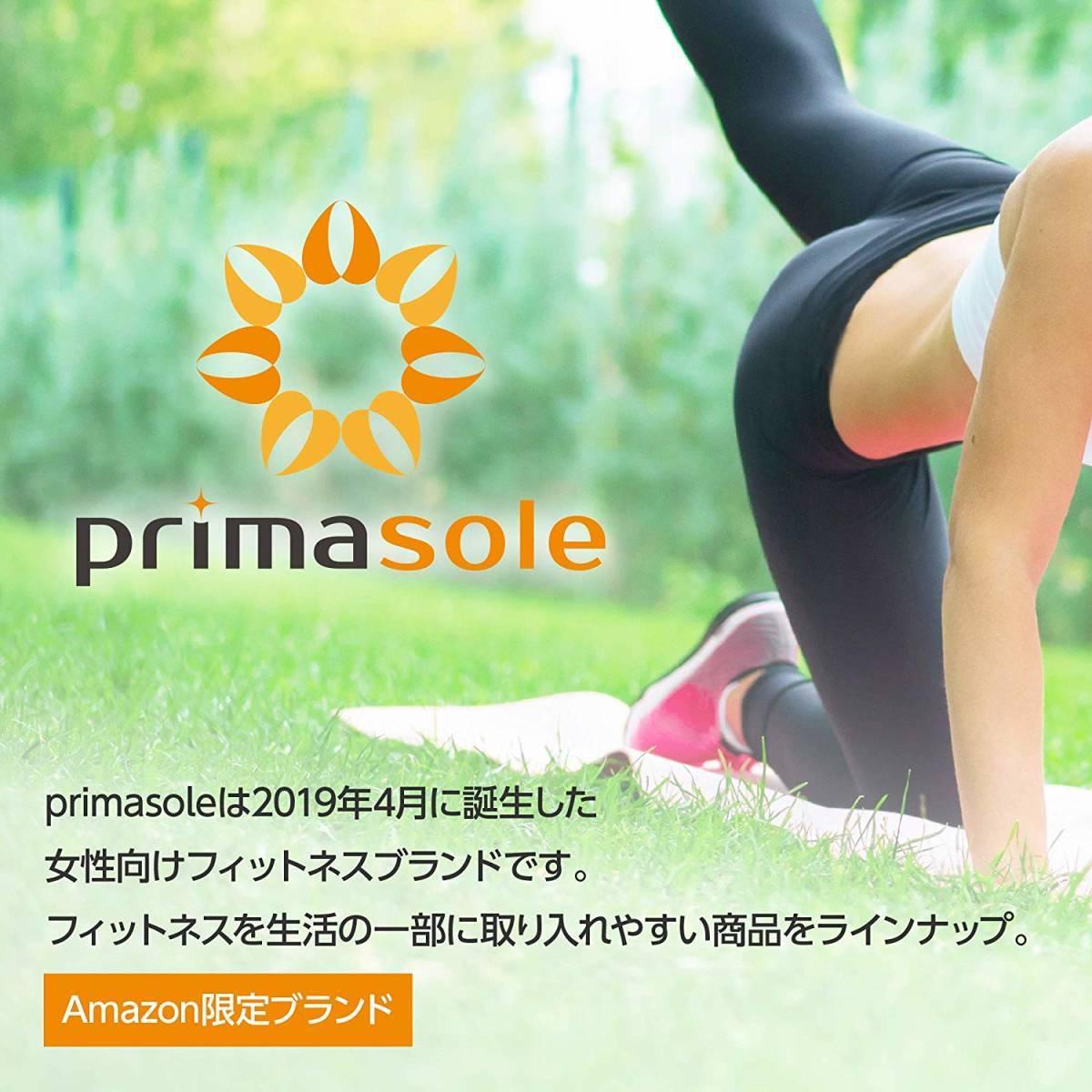 【限定ブランド】プリマソーレ(primasole) フィットネスボール 【65cm】空気入れ付き バランスボール フィットネス ピラティス
