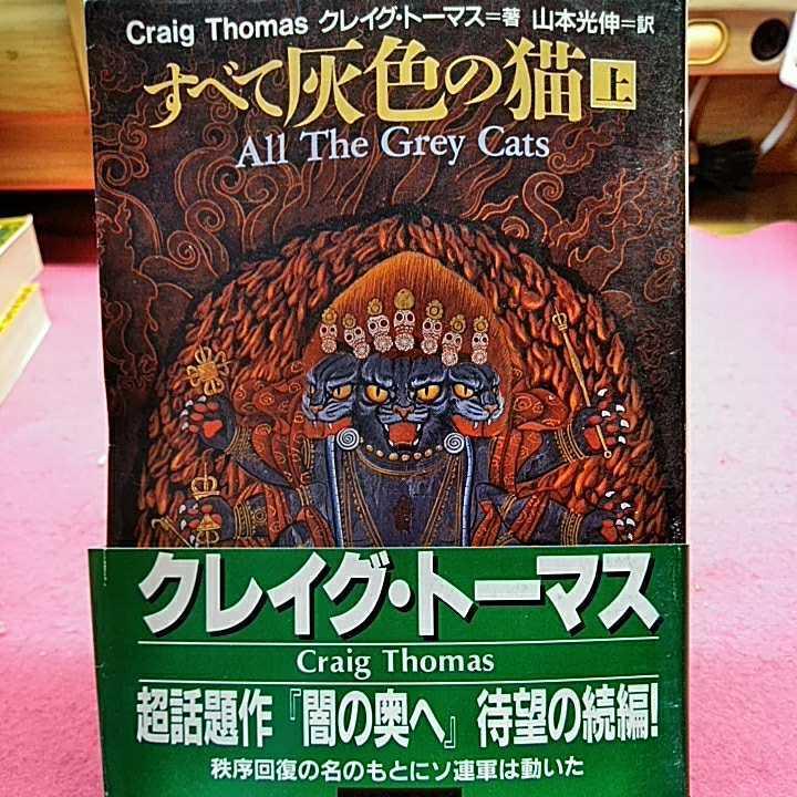 開運招福!★A07★ねこまんま堂★まとめお得★ 全て灰色の猫 クレイグトーマス_画像1