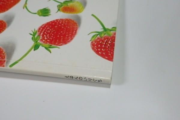 ♪E31 えほんのいりぐち いちご♪2歳児向けセレクション 福音館書店_画像4