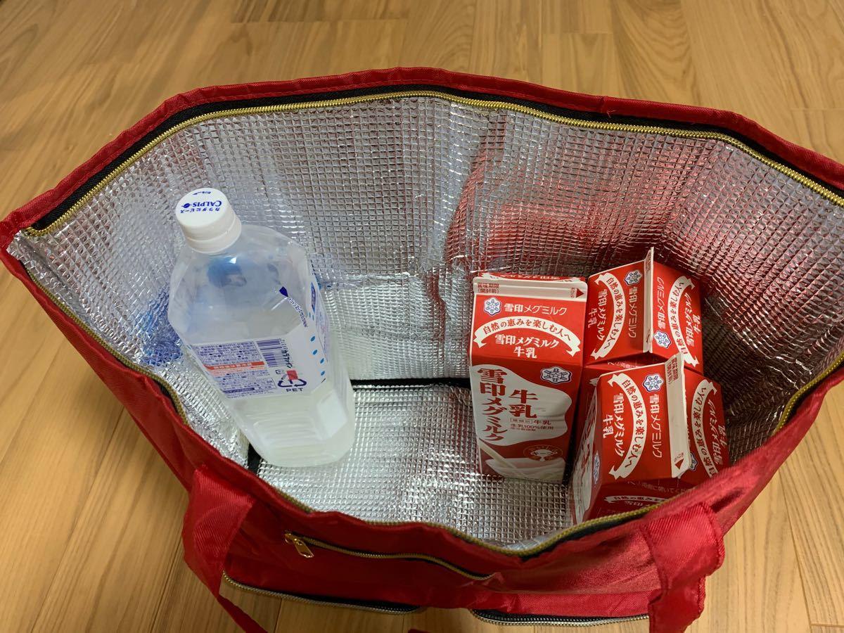 レジカゴバッグ 保冷 保温 折りたたみ エコバッグ 大容量 マイバッグ グレー