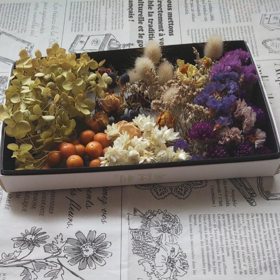 ドライフラワー花材セット