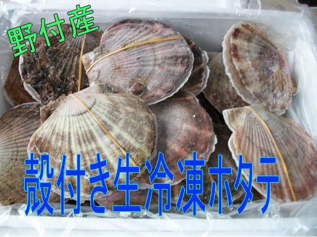 【訳あり品】野付産・殻付き生冷凍ほたて5kg(17~19枚程度)_画像1