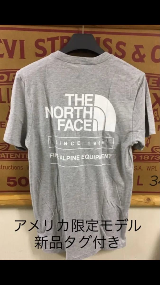THE NORTH FACE 半袖Tシャツ throwback アメリカ限定