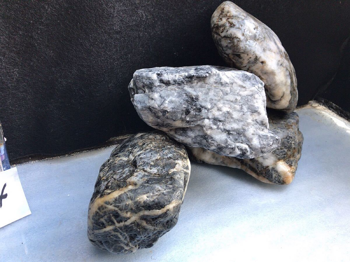 124 天然石アクアリウム 熱帯魚メダカ金魚水槽レイアウト盆栽ガーデニング