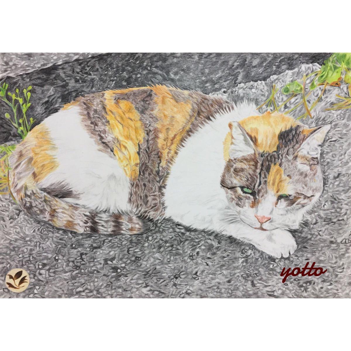 色鉛筆画「 居場所 」A4・額付き◇◆手描き◇原画◆猫◇◆yotto_画像1