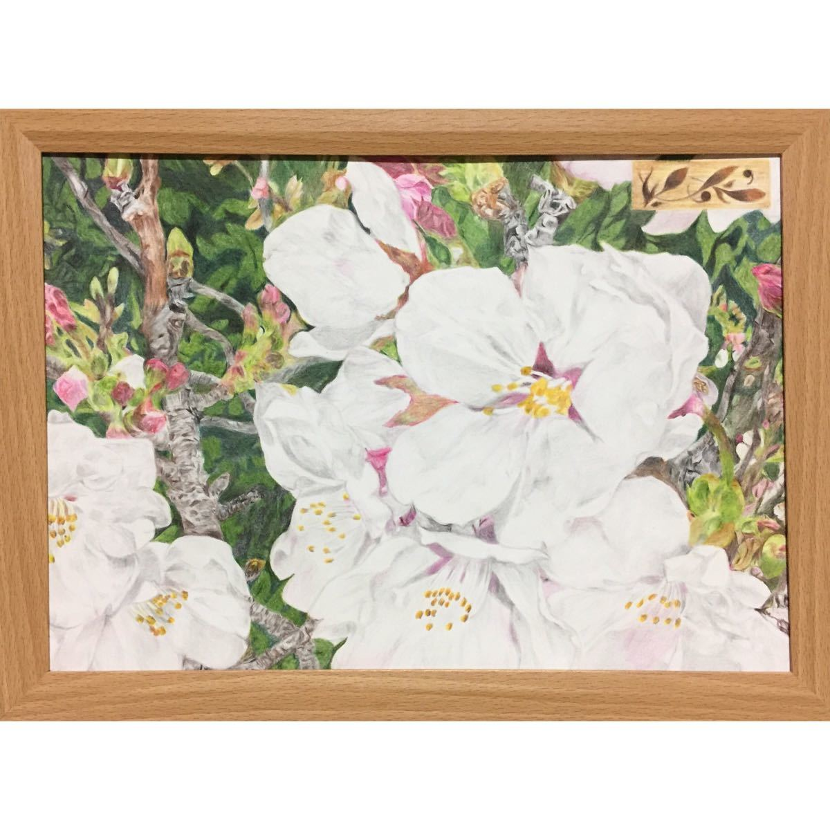色鉛筆画「 いつか、また… 」A4・額付き◇◆手描き◇原画◆桜・花・風景画◆yotto_画像2