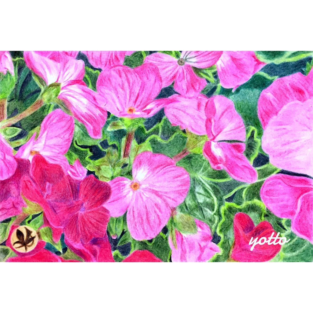 色鉛筆画「 彩《 2 》」ポストカードサイズ・額付き◇◆手描き◇原画◆花・風景画◆yotto_画像1