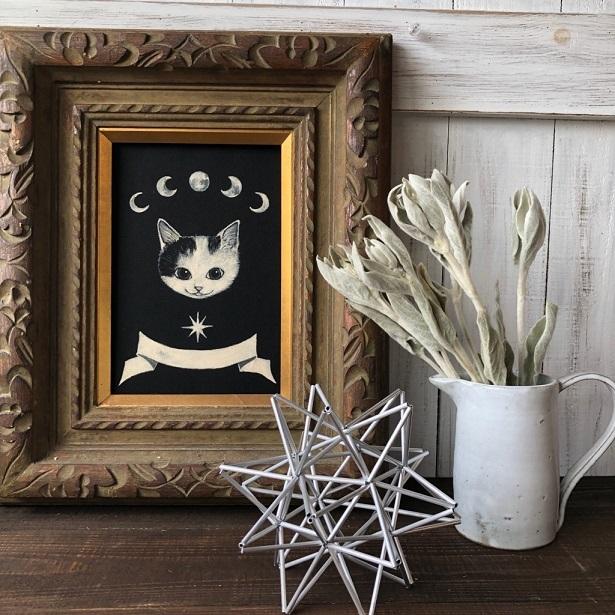 ラムズイヤー5本セット シルバーリーフドライフラワー花材 リース スワッグ そのままインテリアなどに 星月猫_画像5