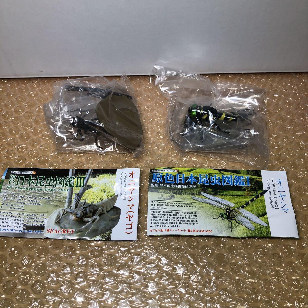 原色日本昆虫図鑑 オニヤンマ 2種_画像1