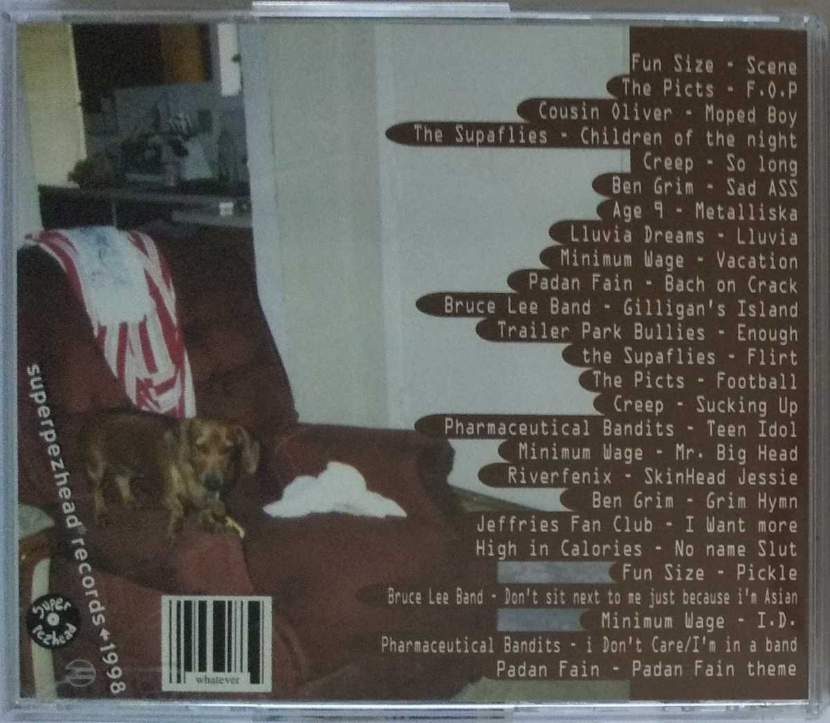 Welcome To Camp Mohawk 1998年 オムニバスCD Pop Punk Ska Punk Fun Size Ben Grim Cousin Oliver Riverfenix