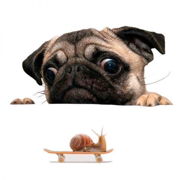 《特価☆1円~》3D パグ 犬 時計 車 窓 デカール かわいい ペット 子犬 ステッカー デコレーション 壁 装飾 おもしろい_画像2