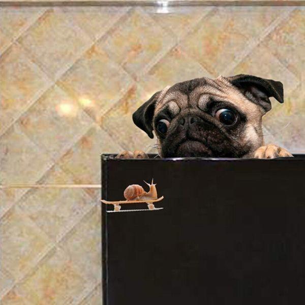 《特価☆1円~》3D パグ 犬 時計 車 窓 デカール かわいい ペット 子犬 ステッカー デコレーション 壁 装飾 おもしろい_画像3