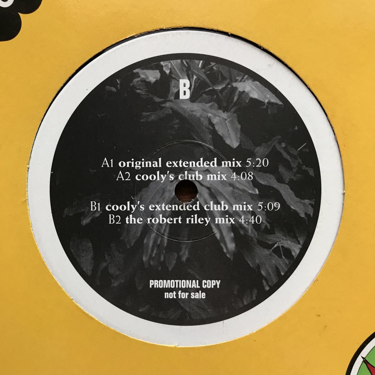 【eu-rap】Winston / Secret Garden[12inch]オリジナル盤《1-4》nightown レーベル