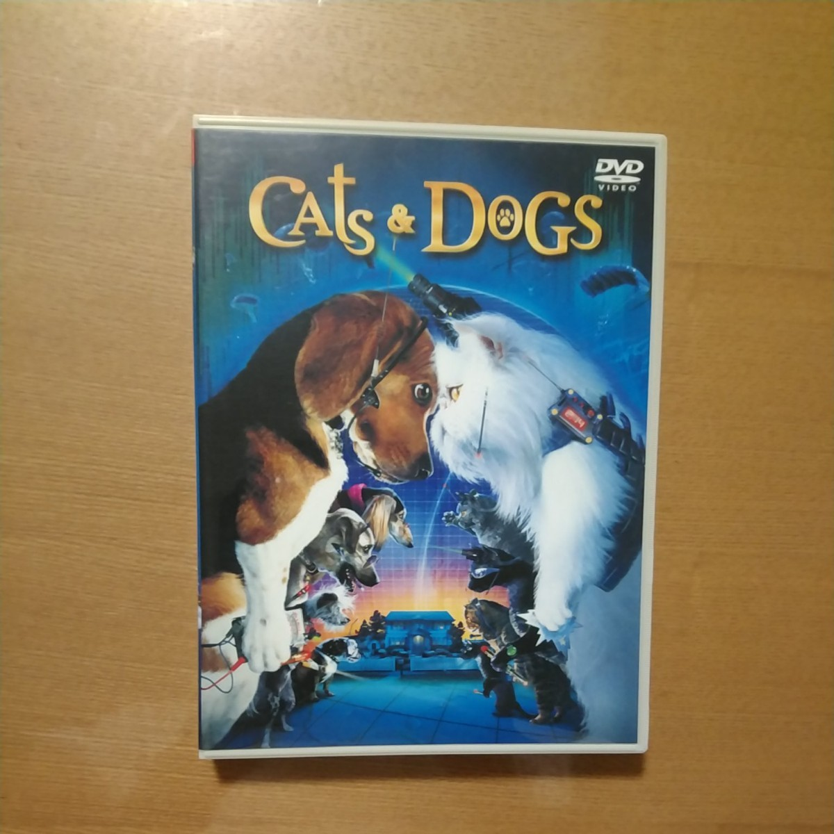 DVD CATS & DOGS