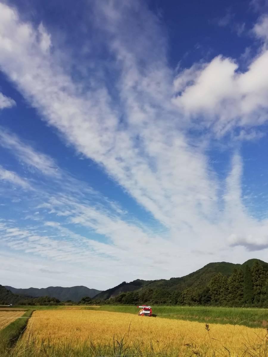 令和元年度山口県萩産コシヒカリ 玄米25kg  _画像3