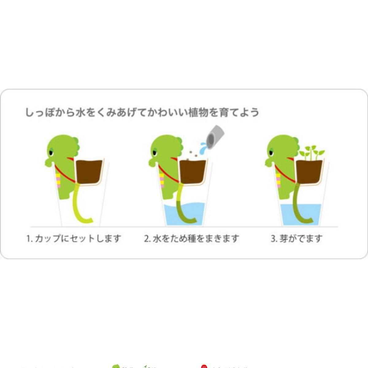 ガチャピンとムックの観葉植物
