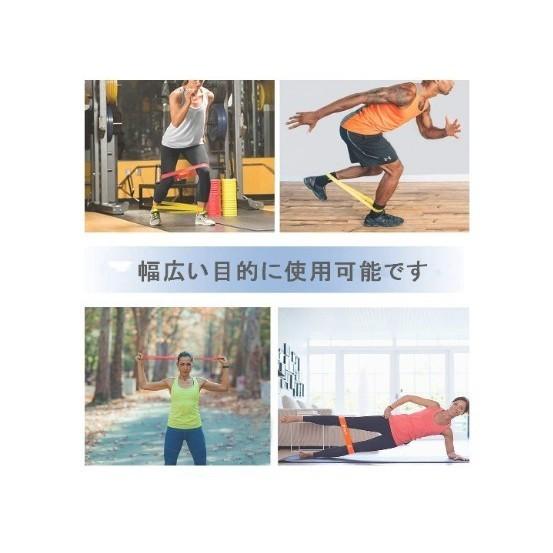 エクササイズバンド スライドディスク 体幹トレーニング 男女兼用 強度別セット