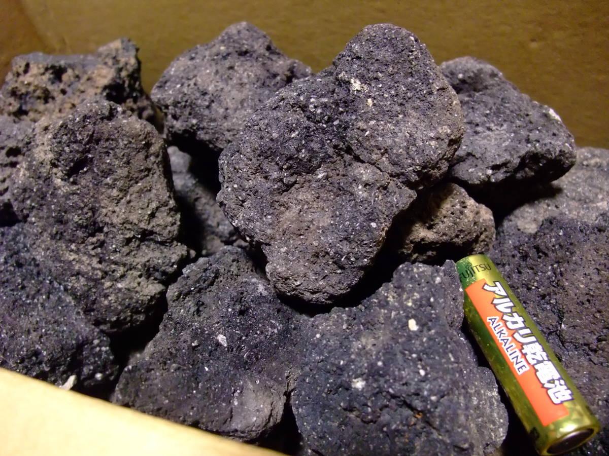 送料無料 溶岩石 素材  盆栽 盆景 苔庭 水景  水槽  レイアウト アクアリウム テラリウム  20コ 60サイズ