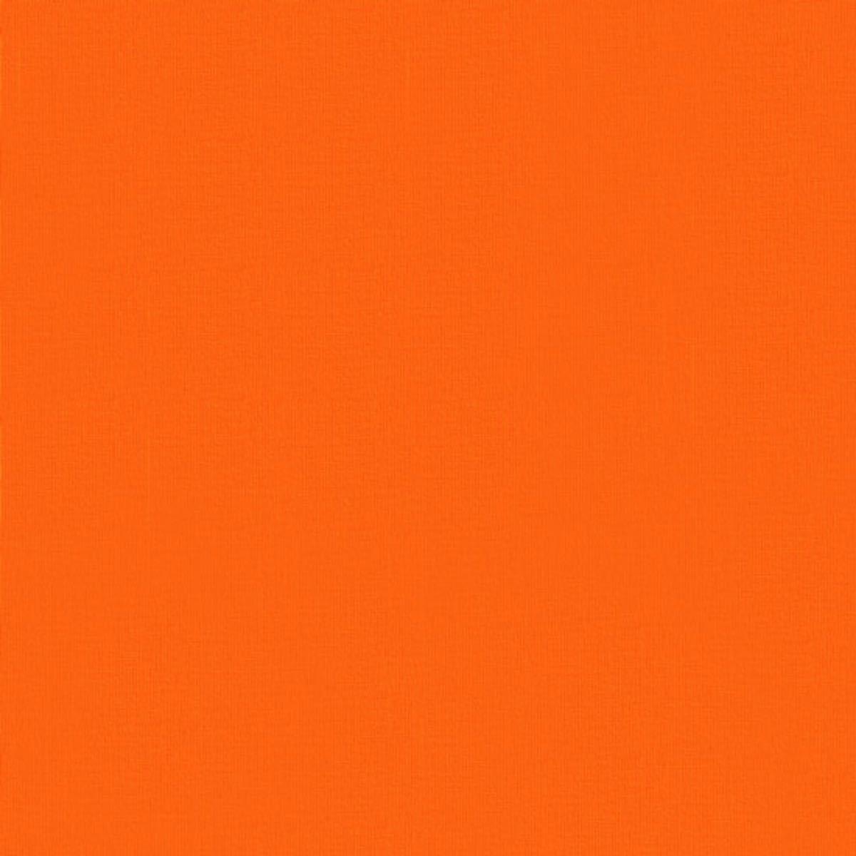 ネイルチップ フルーツネイル 桃 ニュアンスグラデ【10本・1回分接着テープ付】