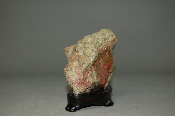 下仁田菊花石 自然石(盆景 水石 鑑賞石 飾り石)ID3103_画像2