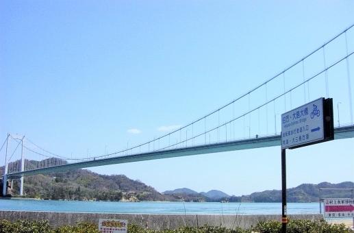 地元道の駅で人気の愛媛県産果汁100%デコタンゴールストレートジュース500mlx12本入り管理ナンバー34_画像6