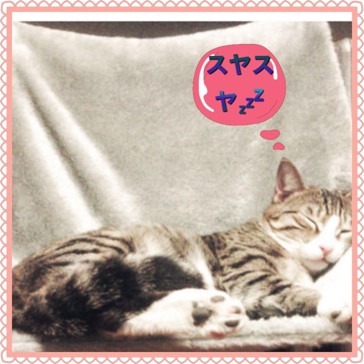 猫のおもちゃ 猫じゃらし どこでもハンモック メッシュハンモック
