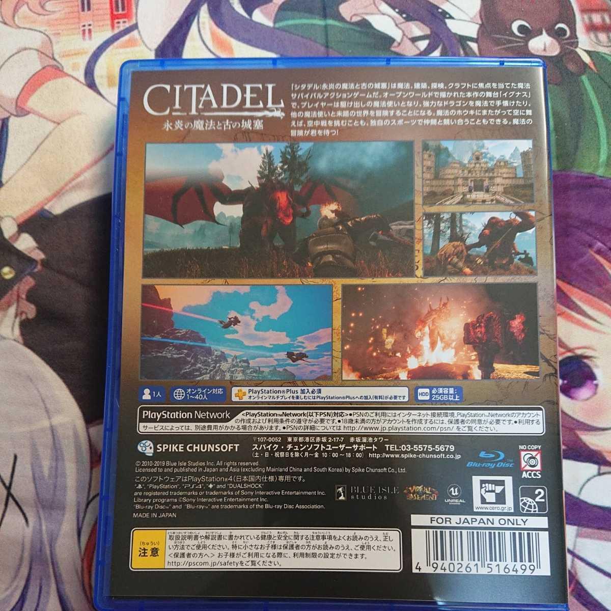 PS4 PS4ソフト シタデル ファンタジー サバイバル