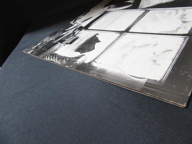 IONA★Cuckoo UK Silverscales オリジナル_画像6