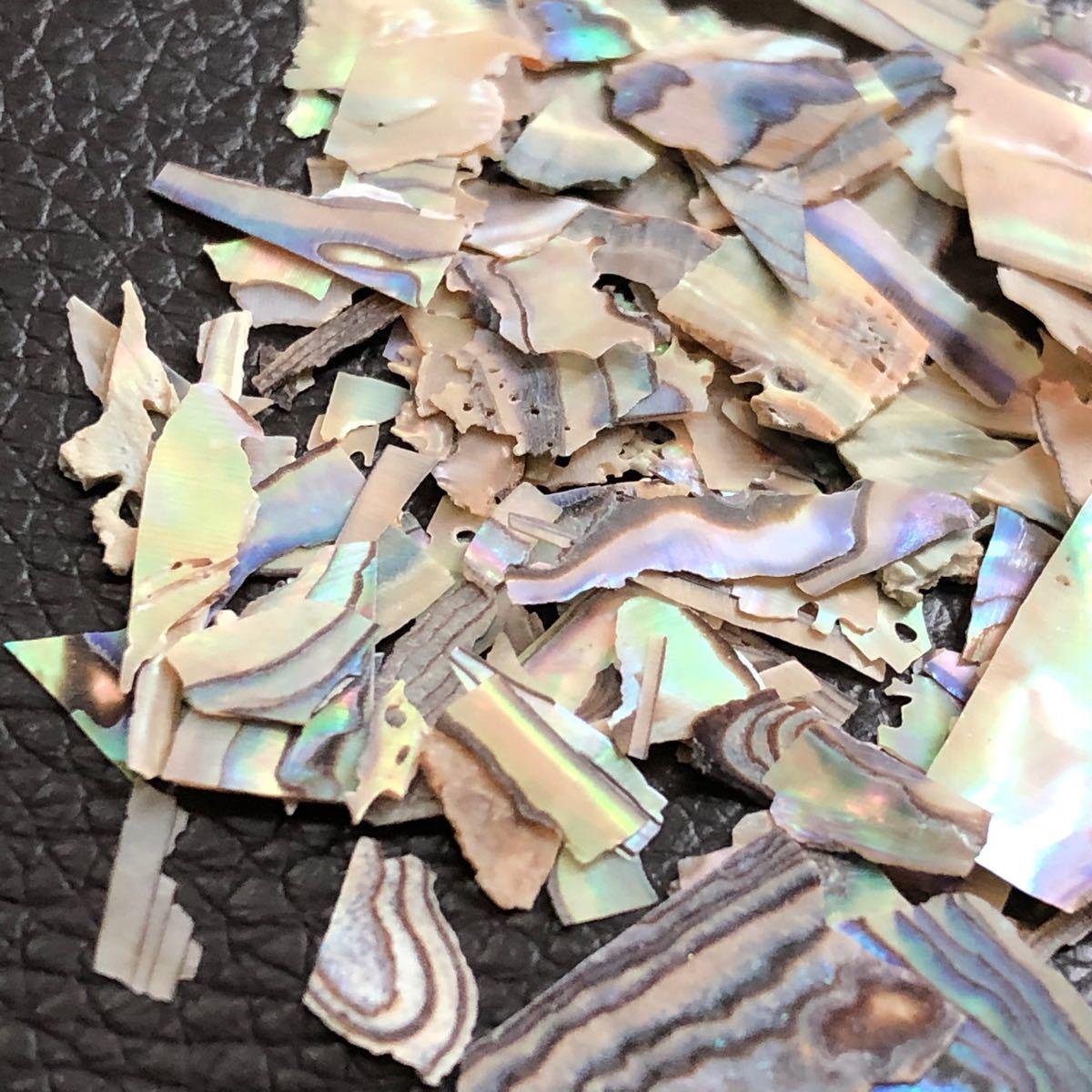 ネイル シェルフレーク 4カラーセット 貝殻 クラッシュ レジン