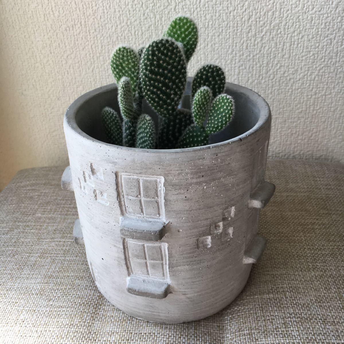 サボテン植木鉢付き