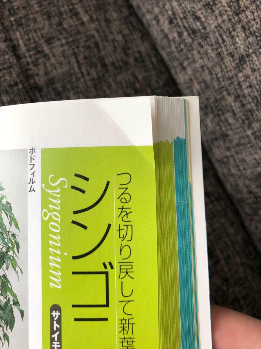 たのしい 観葉植物
