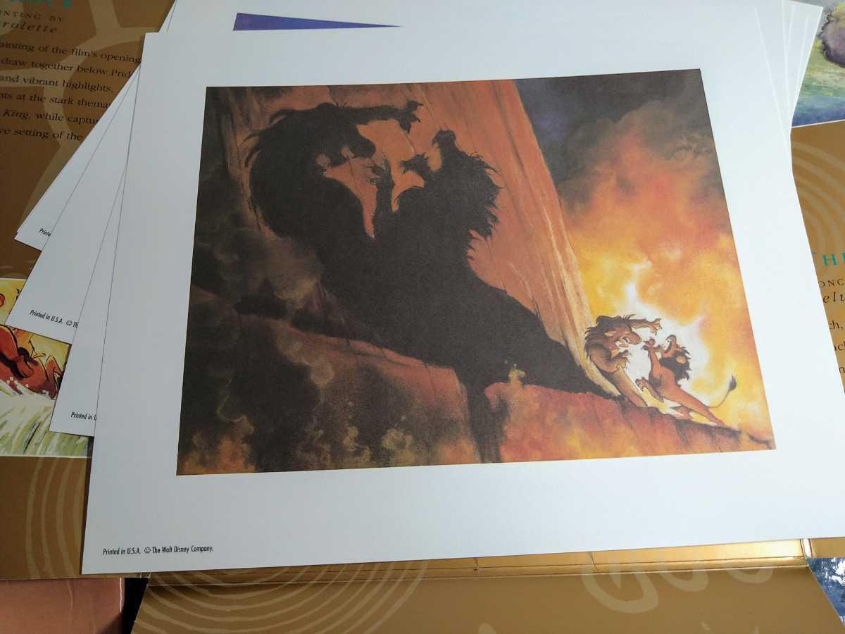 LD BOX 輸入盤 美品 ライオンキング LION KING イラスト画 Disney USA レーザーディスク _画像3