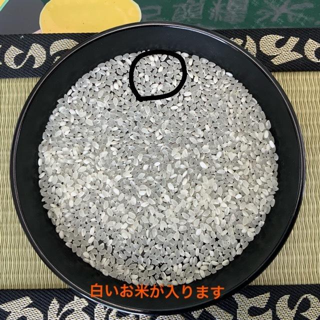 令和元年度 ひのひかり 玄米10㎏×2袋 もちもち 生産者直送_画像2