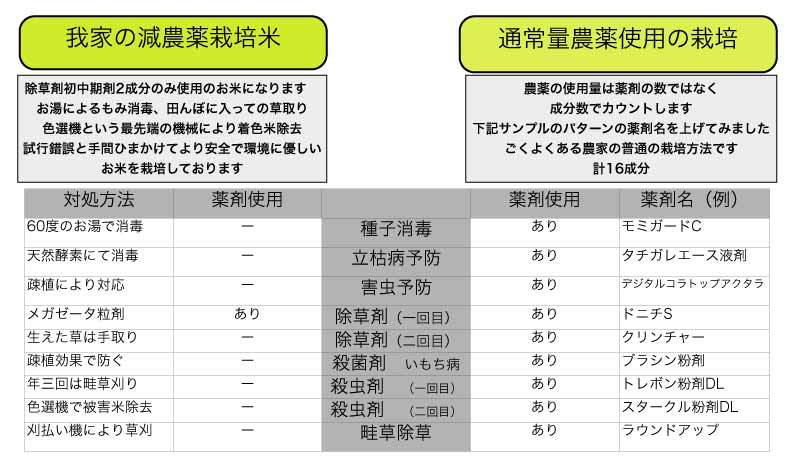 減農薬栽培カグラモチ 玄米24kg  令和2年産 福井県の農家より 新米穫れたて _画像3