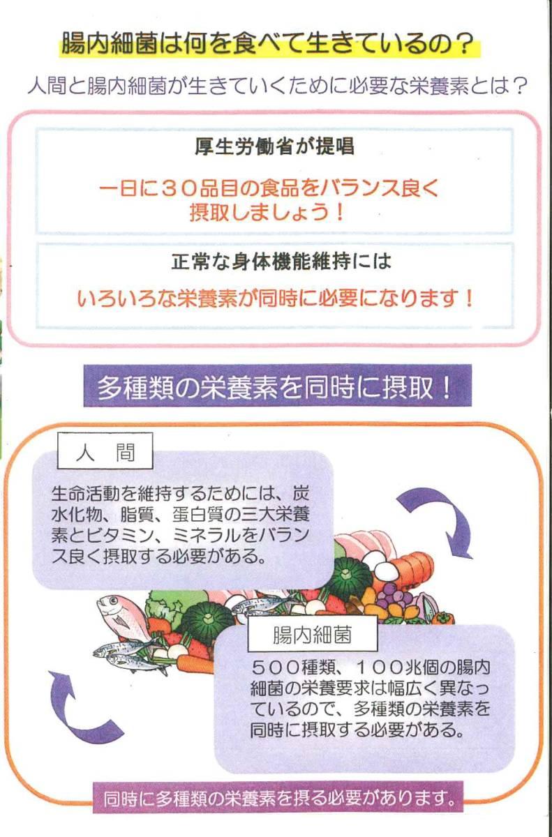 4袋set:コッカス+アミネビタクルクミン90粒入x4・アドバンス腸内細菌食品[最新品が最安値]_画像4