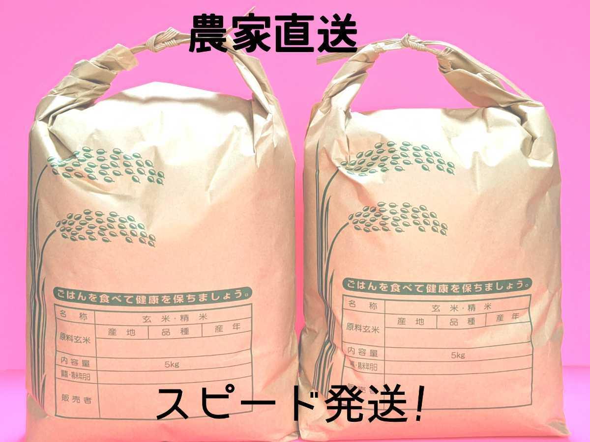 令和2年コシヒカリ 福井県産玄米10kg_画像1