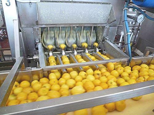 送料無料 ビオカ 有機レモンストレート果汁100% 700ml_画像5