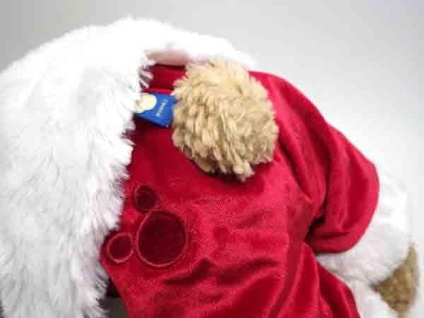 ★ダッフィー コスチューム付ぬいぐるみSサイズ クリスマス2010 Tokyo Disney Sea 東京ディズニーシー サンタ_画像4