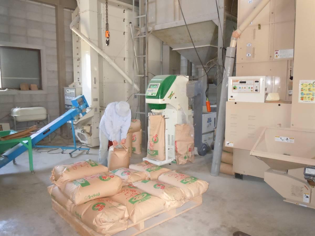 令和3年産新米 コシヒカリ玄米10kg 精米と分搗き精米対応 産直_画像4