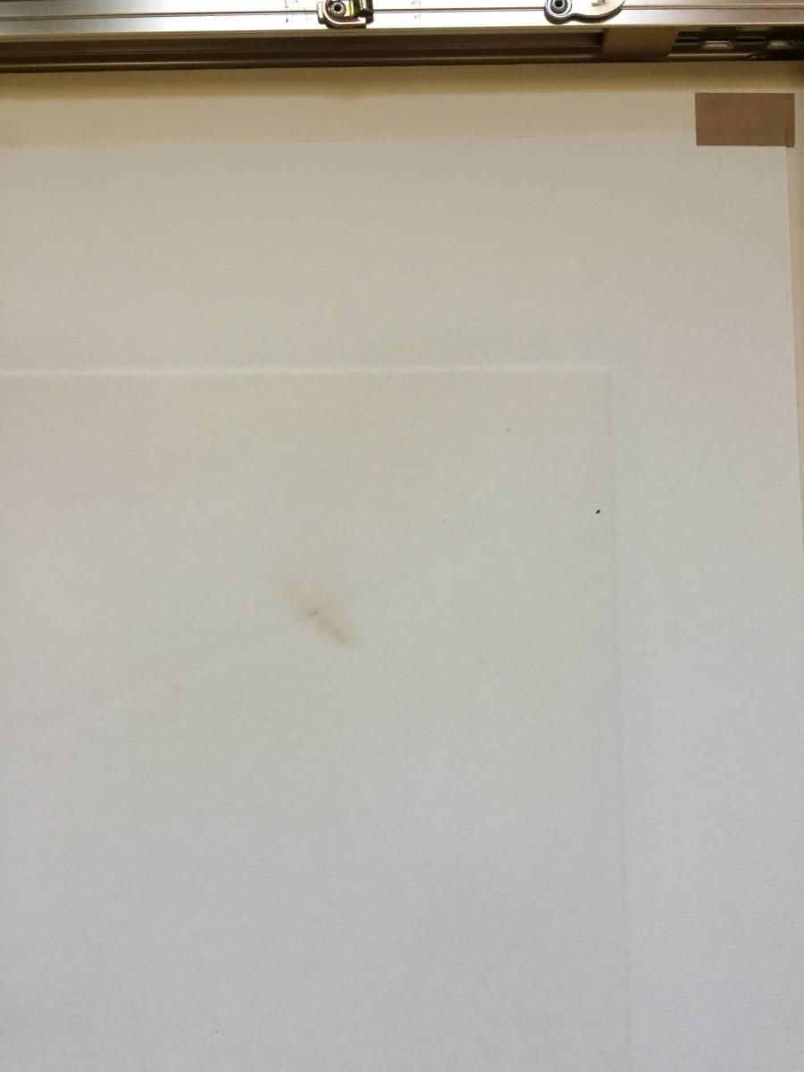 深沢幸雄(深澤幸雄) 『 ひたいの傷 』  銅版画 1979年 75部 額装  【真作保証】 _茶色の部分の裏側