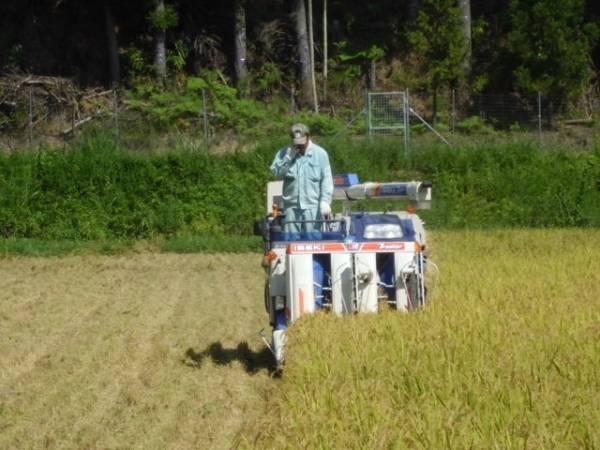 令和2年度福井こしひかり・減農薬白米10kg・送料無料・精米無料・害虫農薬散布無3_画像3