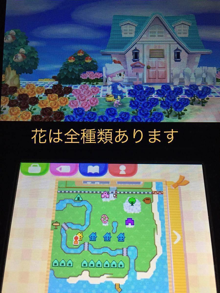 とびだせどうぶつの森 3DSソフト データあり レアアイテム アミーボ家具あり