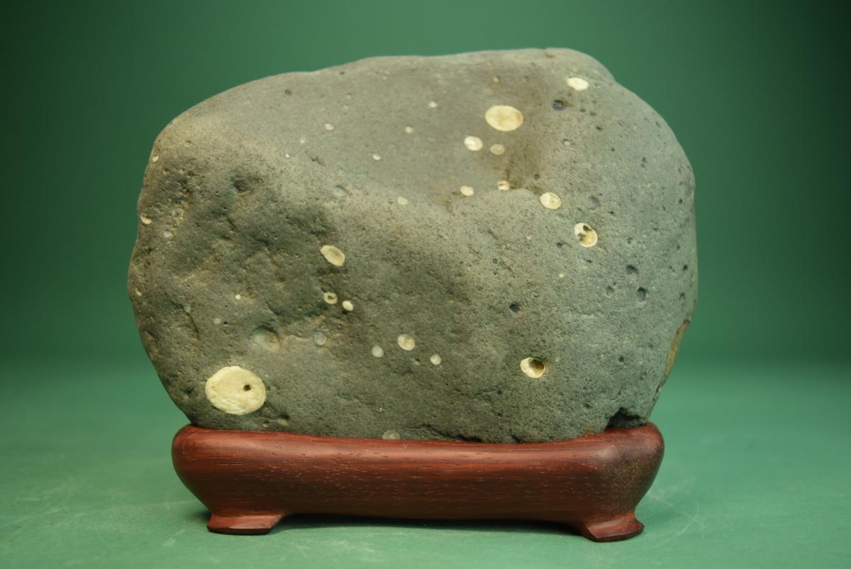 利根川産 白梅花石 (盆景 水石 鑑賞石 飾り石)ID5072_画像1