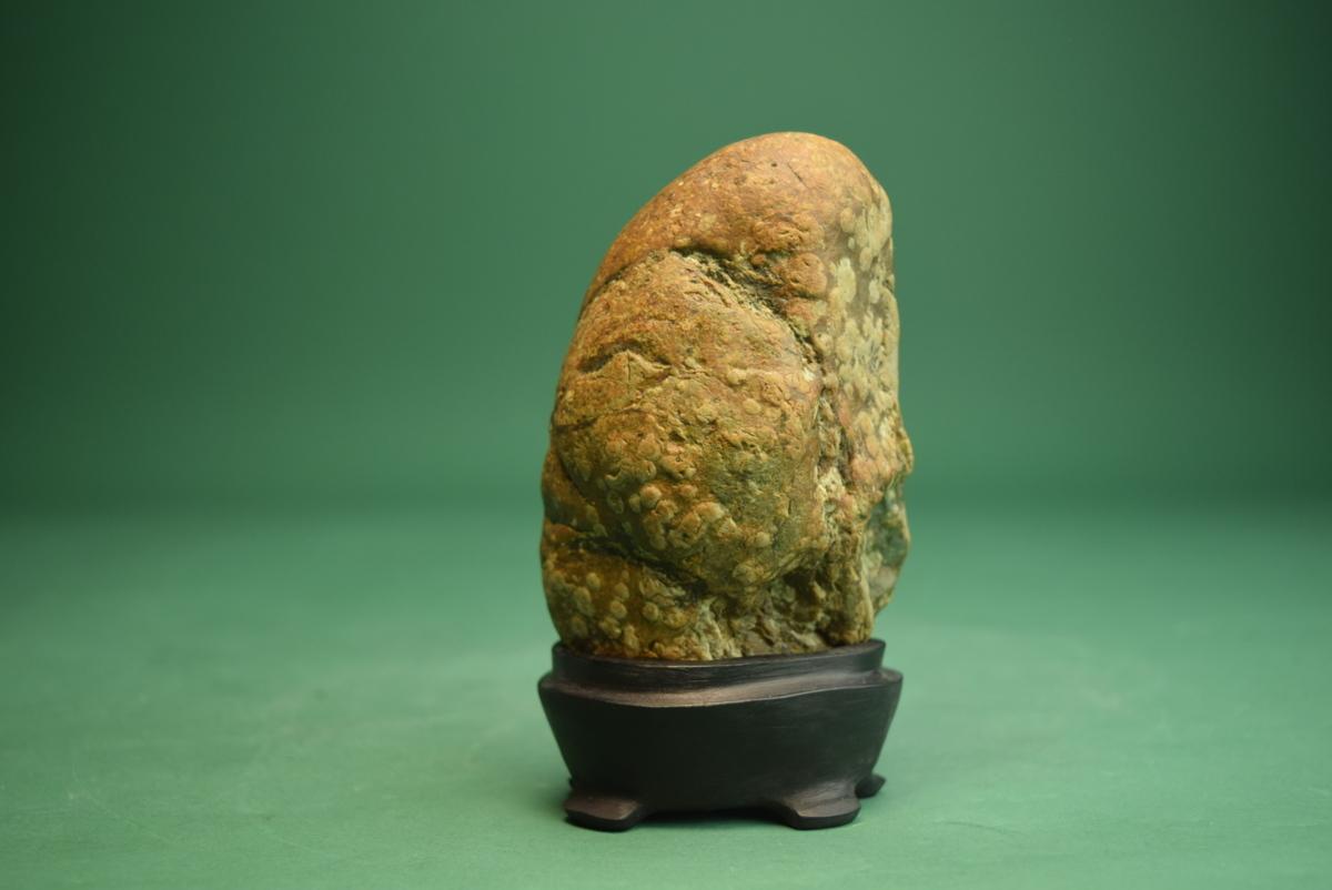 梅花石(盆景 水石 鑑賞石 飾り石)ID5096_画像3