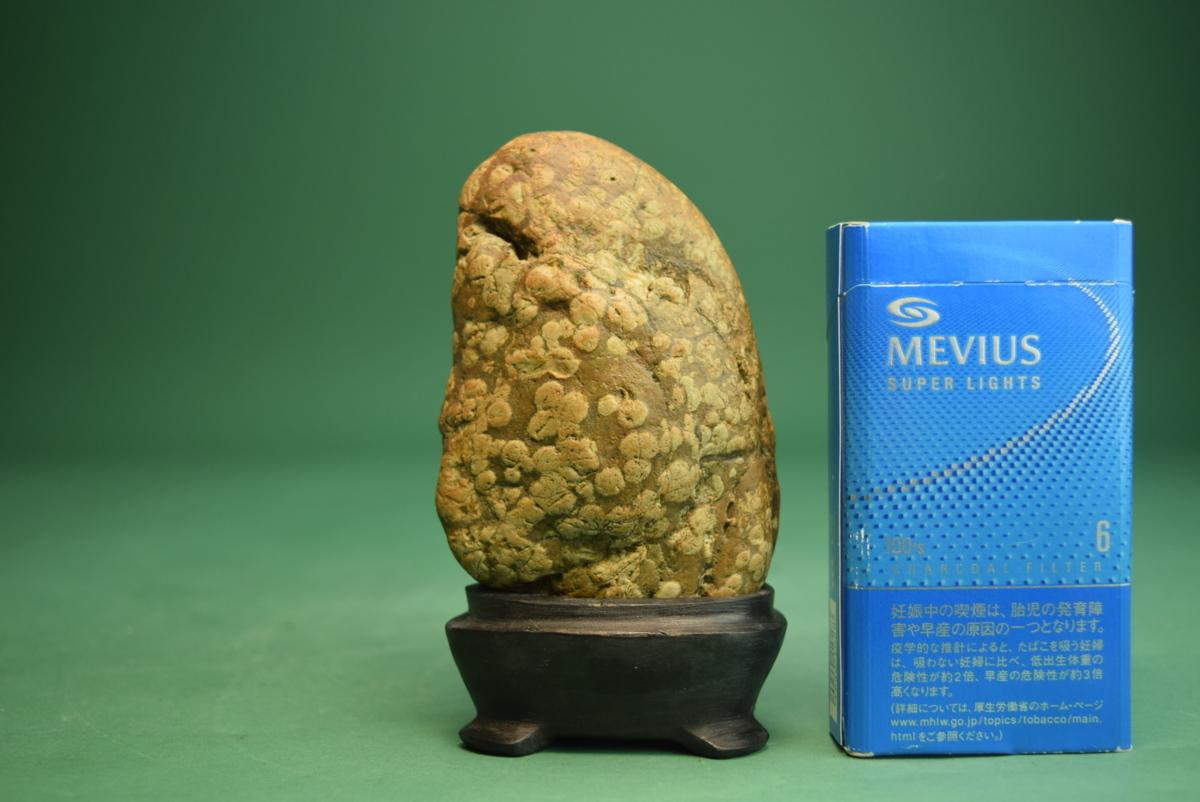 梅花石(盆景 水石 鑑賞石 飾り石)ID5096_画像10