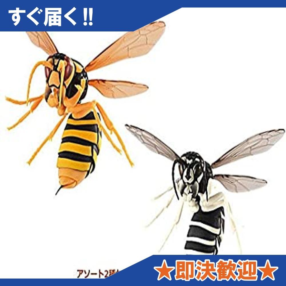 すずめばち ガシャポン [アソート2種セット(2.キイロスズメバチ/3.クロスズメバチ)]_画像1