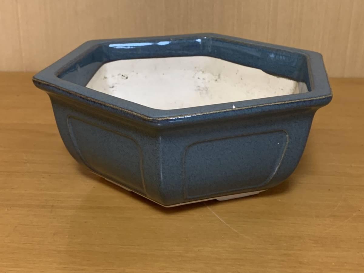 盆栽 鉢 赤水_画像4