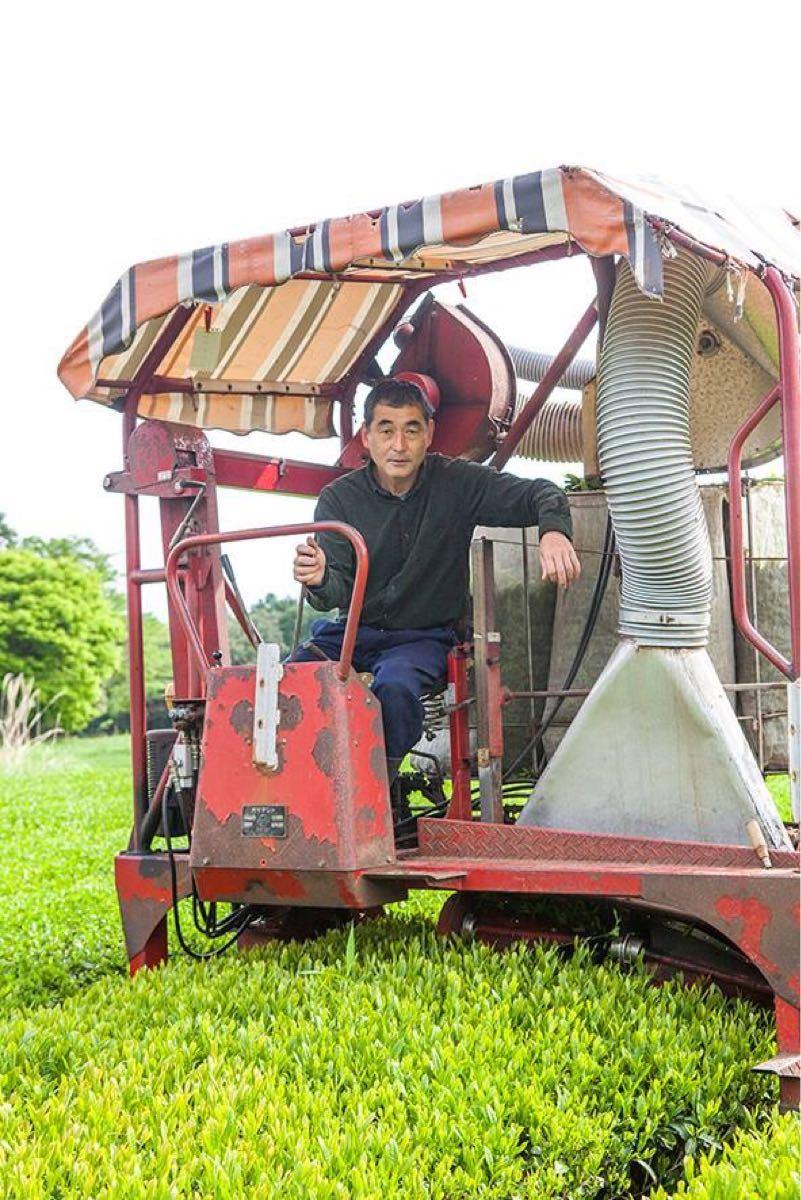あさぎり芽茶100g2袋 生産者直売 無農薬・無化学肥料栽培
